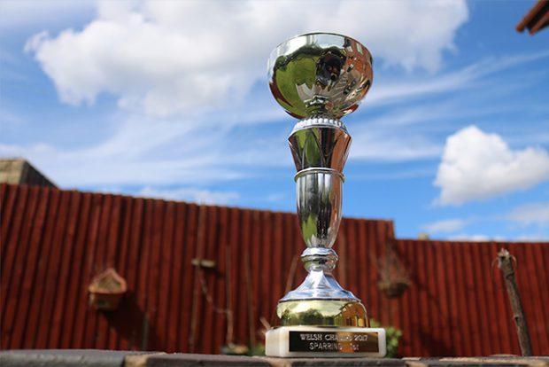 trophy-blog